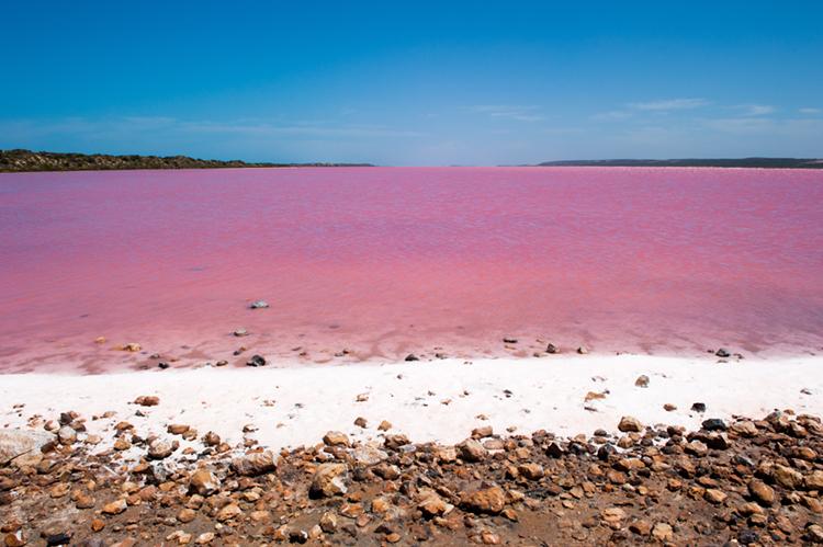 Australia S Pink Lakes