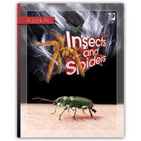 A Look At Insects and Spiders cover