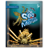 The Sea and Its Marvels