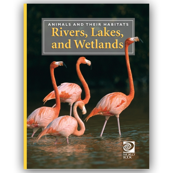 Rivers, Lakes, and Wetlands cover