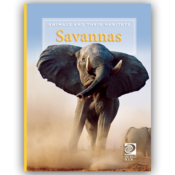 Savannas cover