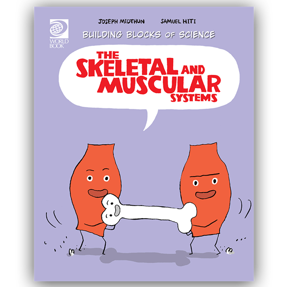 Skeletal and Muscular Systems cover