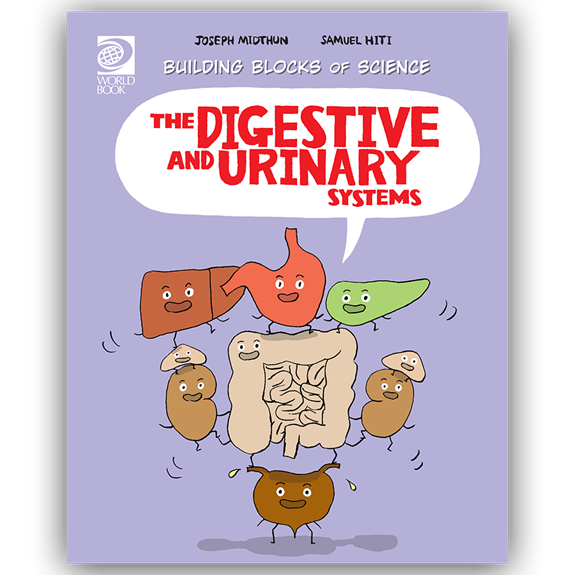 The Digestive and Urinary Systems cover