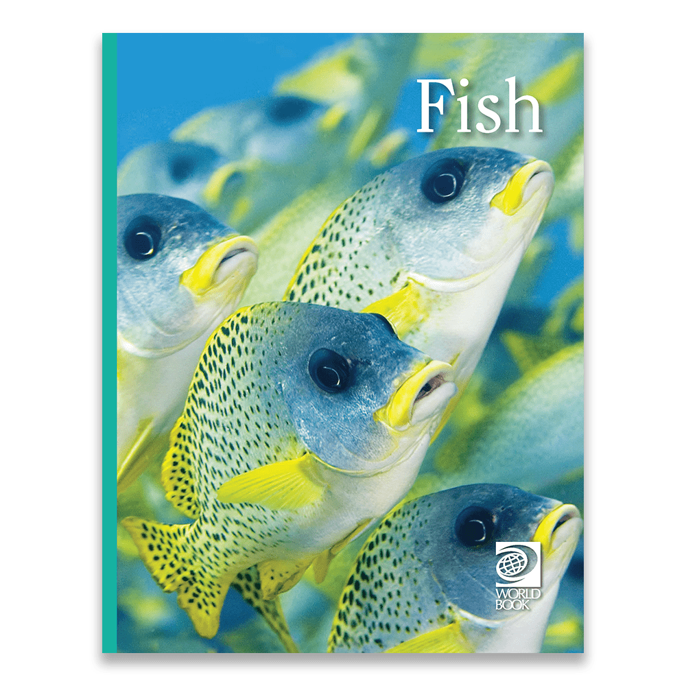 Fish cover
