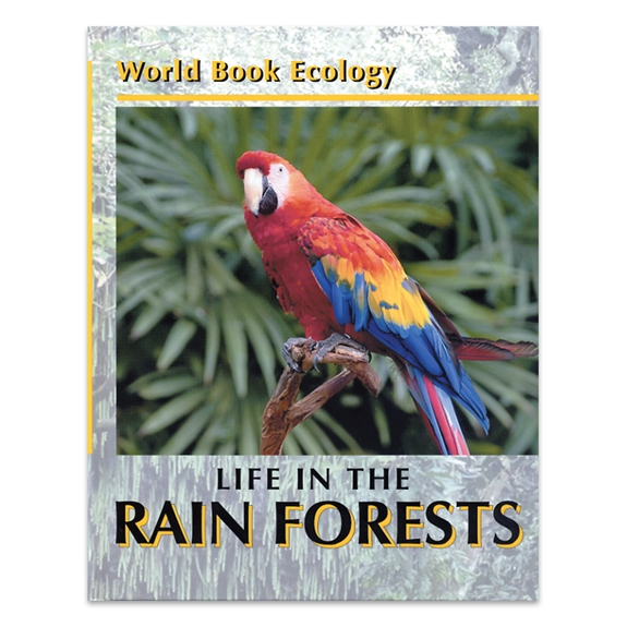 Life in the Rain Forest cover