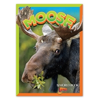 BOLT Moose cover
