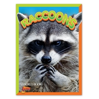 BOLT Raccoons cover