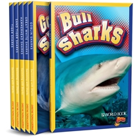 Swimming with Sharks sharks, ocean, swimming, non-fiction, world book