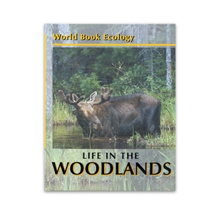 World Book Ecology: Life in the Woodlands