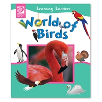 World of Birds flightless bird, parrot, pigeon, woodpecker, flamingo, wing