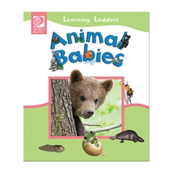 Animal Babies (Learning Ladders)